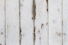 与剥落的白色光泽涂料的木板条背景 免版税库存照片
