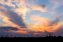 与剧烈的云彩的非洲日落在天空 免版税库存照片