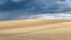 与剧烈的雷云的夏天风景在背景中 免版税库存照片