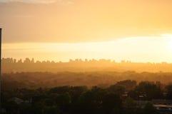 与剪影树在前景和大厦的有雾的都市风景日落在背景中 库存照片