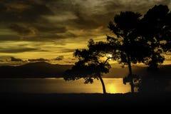 与剪影树的日落在小山顶 免版税库存图片