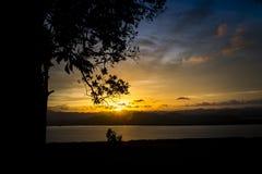 与剪影树的日落在小山顶 免版税库存照片