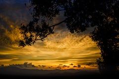与剪影树的日落在小山顶 库存照片