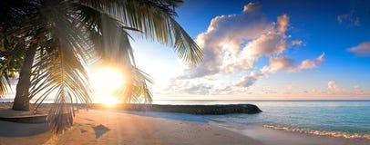 与剪影棕榈树日落的美丽的热带海滩 库存照片