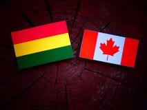 与加拿大旗子的玻利维亚的旗子在被隔绝的树桩 图库摄影