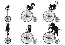 与动物的减速火箭的自行车,向量集 免版税库存照片
