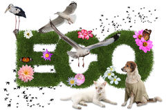 与动物的Eco 3d词, eco概念 库存照片