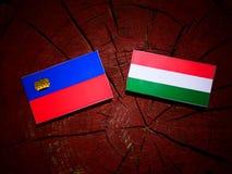 与匈牙利旗子的列支敦士登旗子在被隔绝的树桩 向量例证