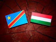 与匈牙利旗子的刚果民主共和国旗子在t 免版税库存照片