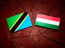 与匈牙利旗子的坦桑尼亚的旗子在被隔绝的树桩 库存例证