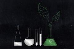 与化学制品和另一个瓶的实验室小玻璃瓶有绿色ingredie的 皇族释放例证