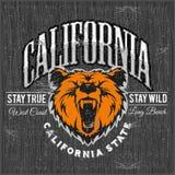 与北美灰熊, T恤杉印刷品图表头的狂放和自由葡萄酒印刷术  库存例证
