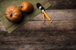 与匙子的两个南瓜在绿色餐巾和木头在土气styl 库存照片