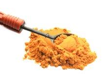 与匙子的姜黄粉末 库存图片