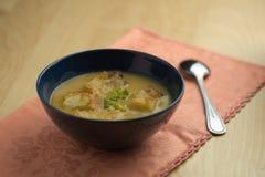 与匙子的花椰菜汤 免版税库存照片