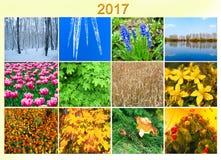 与十二的空白上色了自然的图象日历的2017年 免版税库存照片