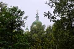 与十字架的东正教圆顶在绿色叶子上 免版税库存图片