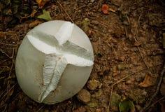 与十字架的蘑菇 免版税库存照片
