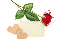 与华伦泰和空白的礼品券的红色玫瑰 免版税库存照片