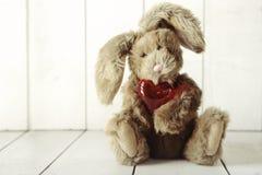 与华伦泰或周年爱题材的玩具熊兔宝宝 免版税库存图片