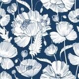 与华美的开花的狂放的鸦片花、叶子和种子头的单色无缝的样式手拉与等高 向量例证