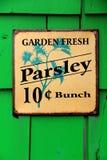 与卖荷兰芹的五颜六色的金属标志的鲜绿色的背景 图库摄影