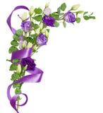 与南北美洲香草的壁角安排开花,玉树绿色叶子 免版税库存图片