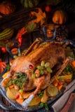与南瓜和果子装填的圣诞节鹅 免版税库存照片