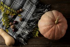 与南瓜格子花呢披肩和栗树的秋天构成在一张木棕色桌上 图库摄影