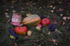 与南瓜秋天收获万圣夜的静物画在tha草,落的叶子,核桃,狂放上升了,葡萄 免版税库存照片