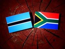 与南非旗子的博茨瓦纳旗子在被隔绝的树桩 皇族释放例证