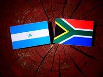 与南非旗子的尼加拉瓜的旗子在被隔绝的树桩 向量例证