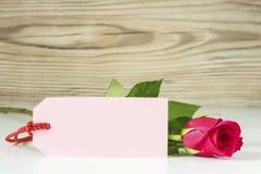 与卡片的一朵玫瑰 免版税图库摄影