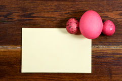 与卡片的红色鸡蛋 库存图片