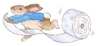 与卫生纸的兔子 免版税库存照片