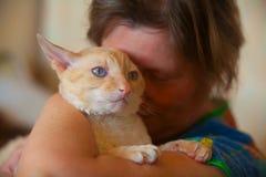 与卷发的美丽的猫 库存照片