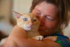 与卷发的美丽的猫 免版税库存图片