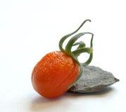 与卷毛皮肤的蕃茄 库存图片