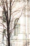 与历史的窗口的经典白色门面 库存照片