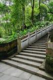 与压印的楼梯栏杆的被遮蔽的山坡石头楼梯在森林 免版税图库摄影
