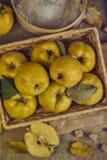 与厨具的很多苹果柑橘,为柑橘p做准备 图库摄影