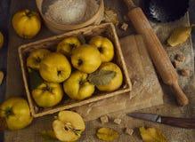 与厨具的很多苹果柑橘,为柑橘p做准备 库存图片