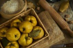 与厨具的很多苹果柑橘,为柑橘p做准备 免版税库存图片