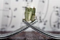 与叉子和大象的概念在幻想背景 免版税库存照片