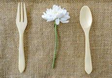 与叉子的白色菊花 免版税图库摄影
