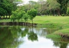 与反射的曼谷市公园五颜六色的树 免版税库存照片