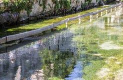 与反射的清楚的河水 免版税库存照片