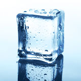 与反射的透明冰块在蓝色玻璃用水滴下 免版税库存图片