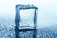 与反射的透明冰块在蓝色玻璃用水滴下 免版税库存照片