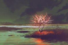 与发光的树的夜风景 免版税库存图片